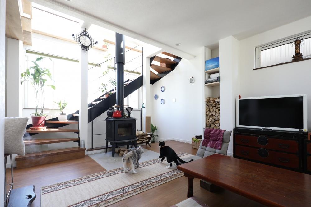 家を建てようと思ったきっかけは? - マンションに住んでいたのですが、2匹目の猫を飼うことになり、もう少し開放的に暮らしたくて。最初は上の階に部屋を探してたんです。そしたら偶然通りがかった場所で、専門職組合さんの土地看板を見つけて。立地もいいし、この場所に家が建つなら、ちょっと問合せしてみようかな、と。はじめは気軽な気持ちでしたね。 -  -